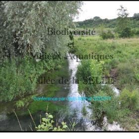 biodiversite&mil_aquatiques.pdf